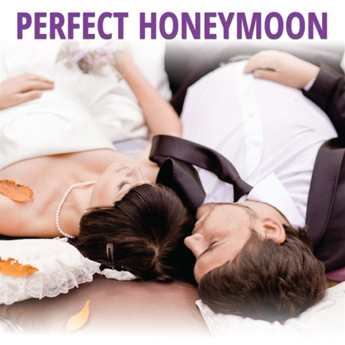 Perfect Honeymoon